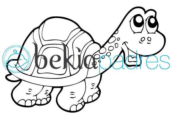 Dibujos De Otoño Para Colorear E Imprimir Gratis: Tortuga: Dibujo Para Colorear