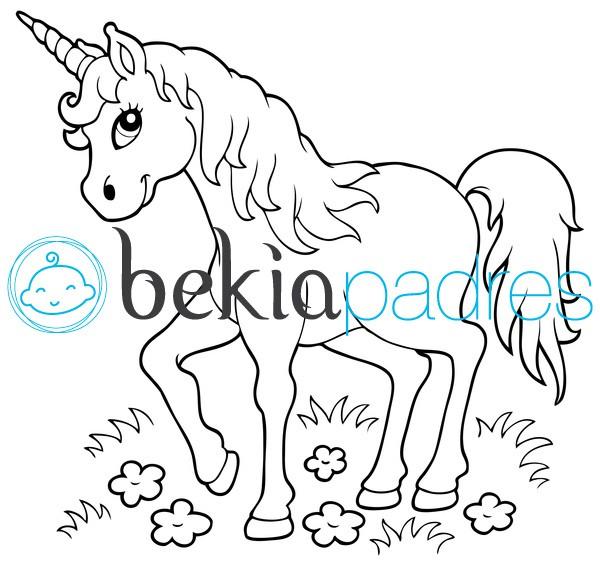 Unicornio: dibujo para colorear